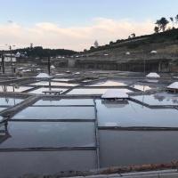Saltskörd i Rio Maior - trevligt resmål