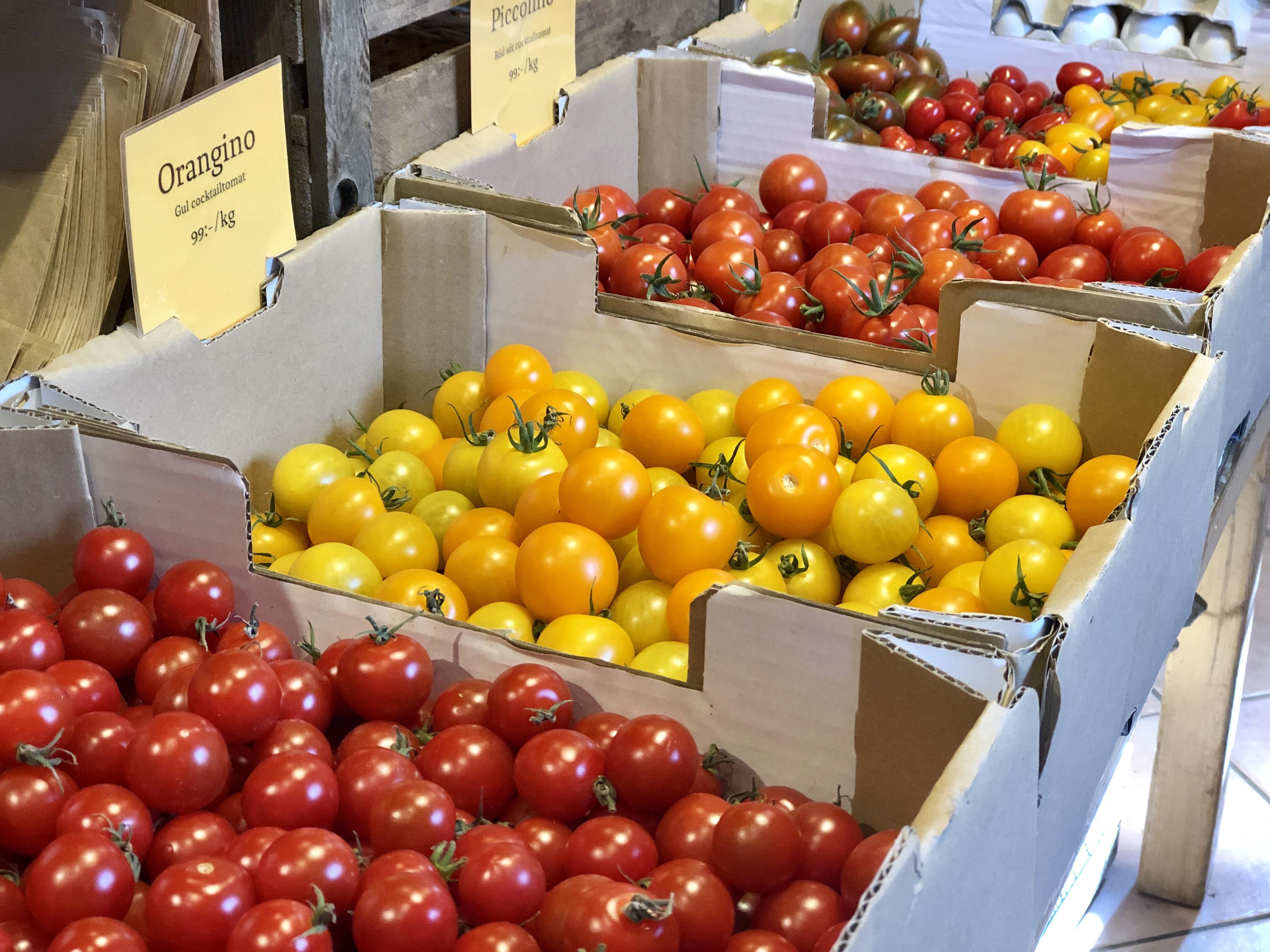 Ändebol ekologiska tomater