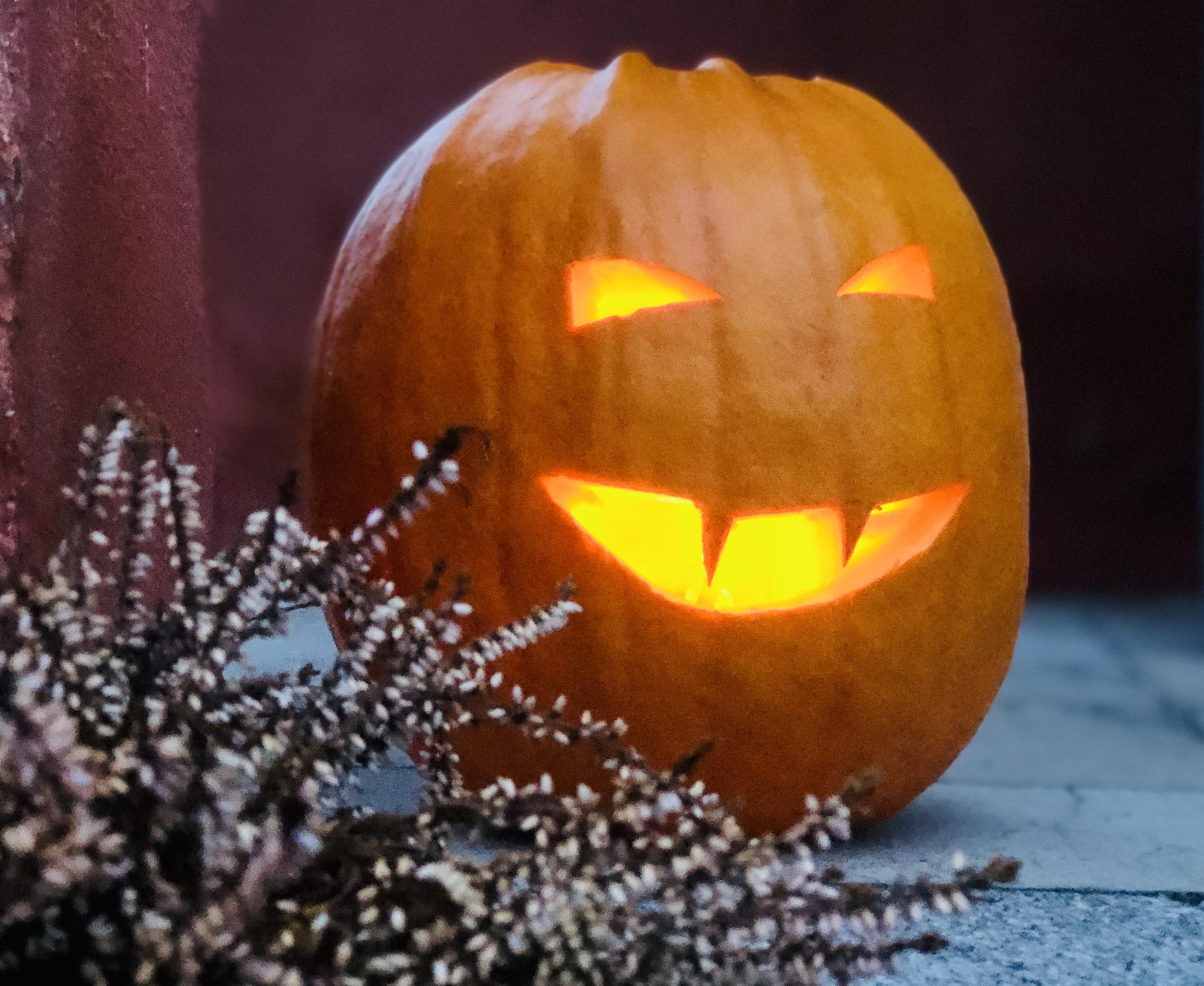 Halloweenpumpa tips recept